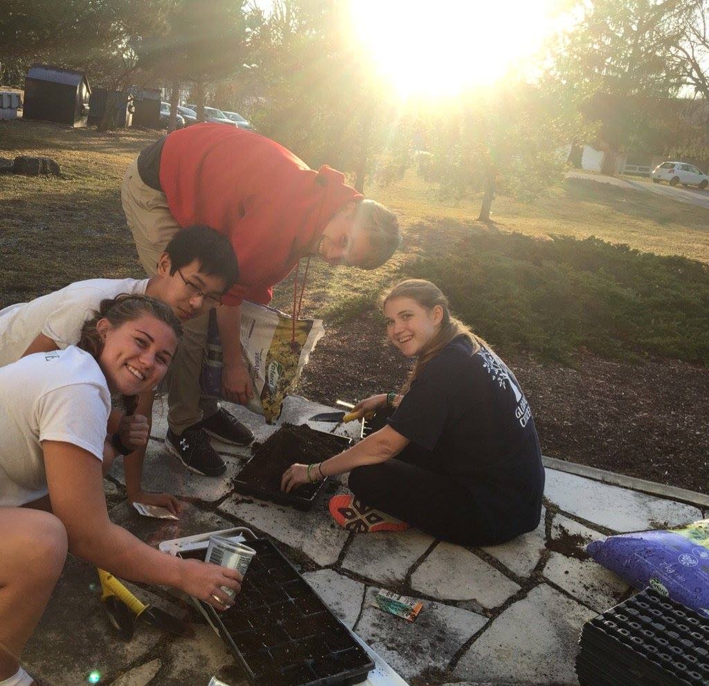 Students plant vegetables and herbs in our community garden