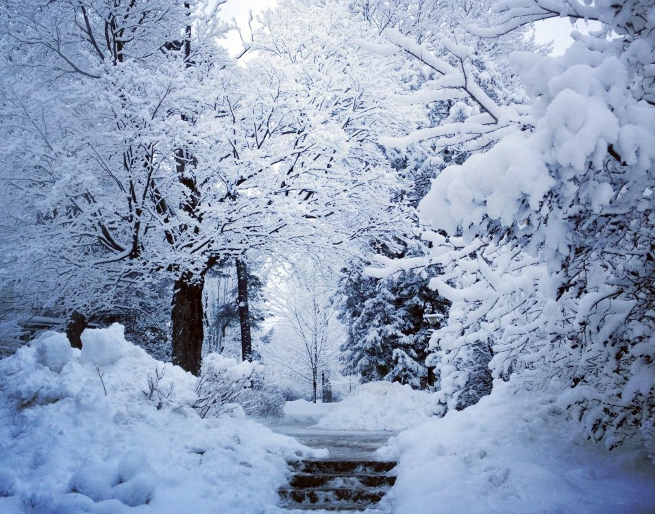 Students are encouraged to explore the beautiful wintertime sights of our campus