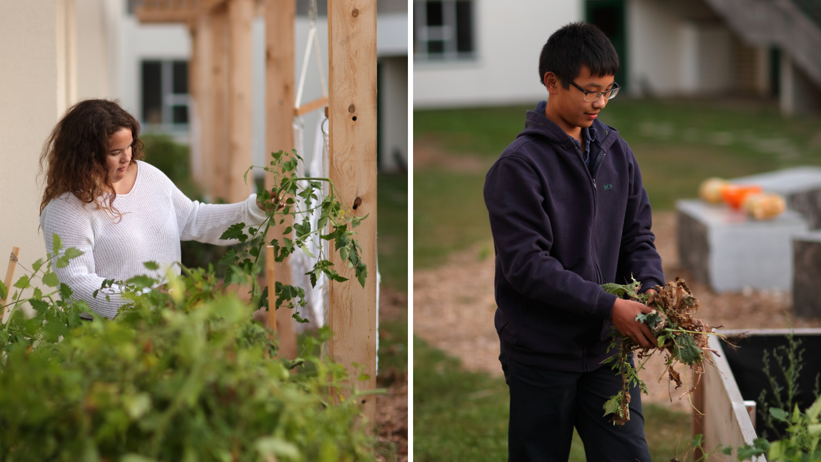 A female student assesses a vine and a male student holds weeds he just pulled from the garden